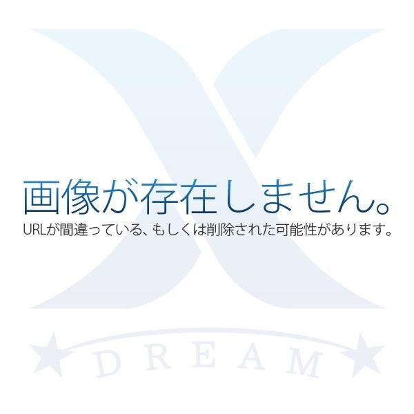 洋室10.5帖は魅力!