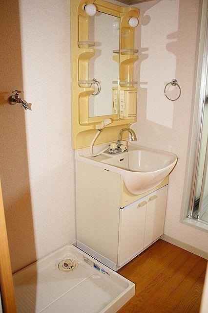 洗面脱衣所 朝の身支度にも便利なシャワー付き洗面台