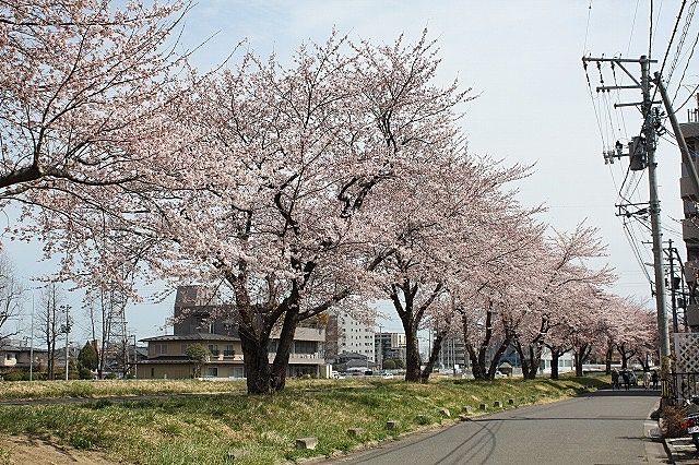 富沢駅西 土地区画整理地内で・・・ 夢のマイホーム計画をご提案します!